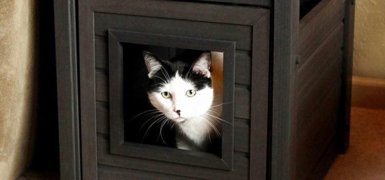 Как спрятать кошачий лоток в интерьере квартиры: 30 фотоидей